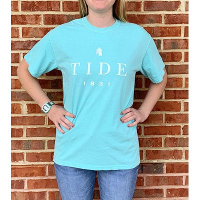 Tide Mint Comfort Colors